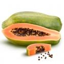 Frutales tropicales