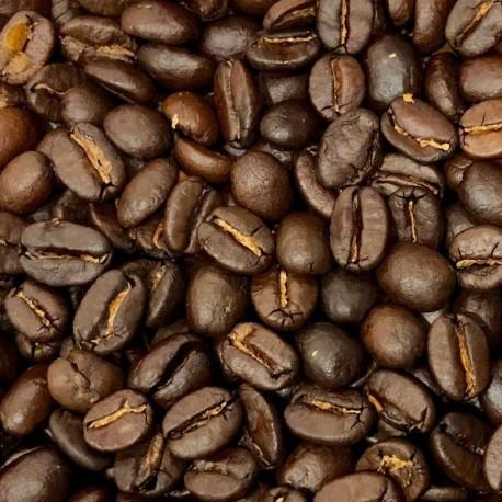 PLANTA CAFE ARABIGA (MACETA 12)