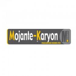 MOJANTE KARYON 1L